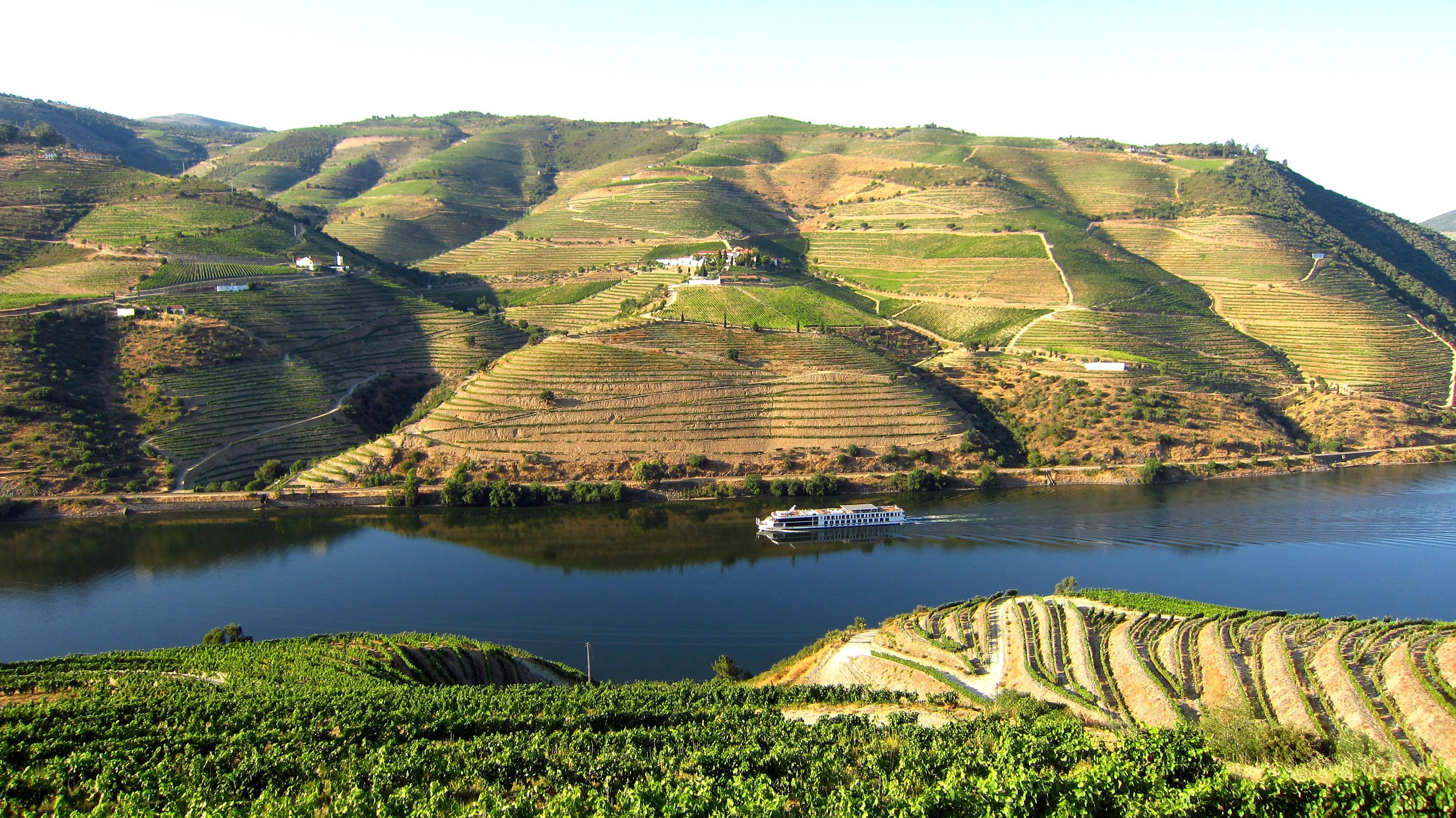 Douro Valley - Food & Wine