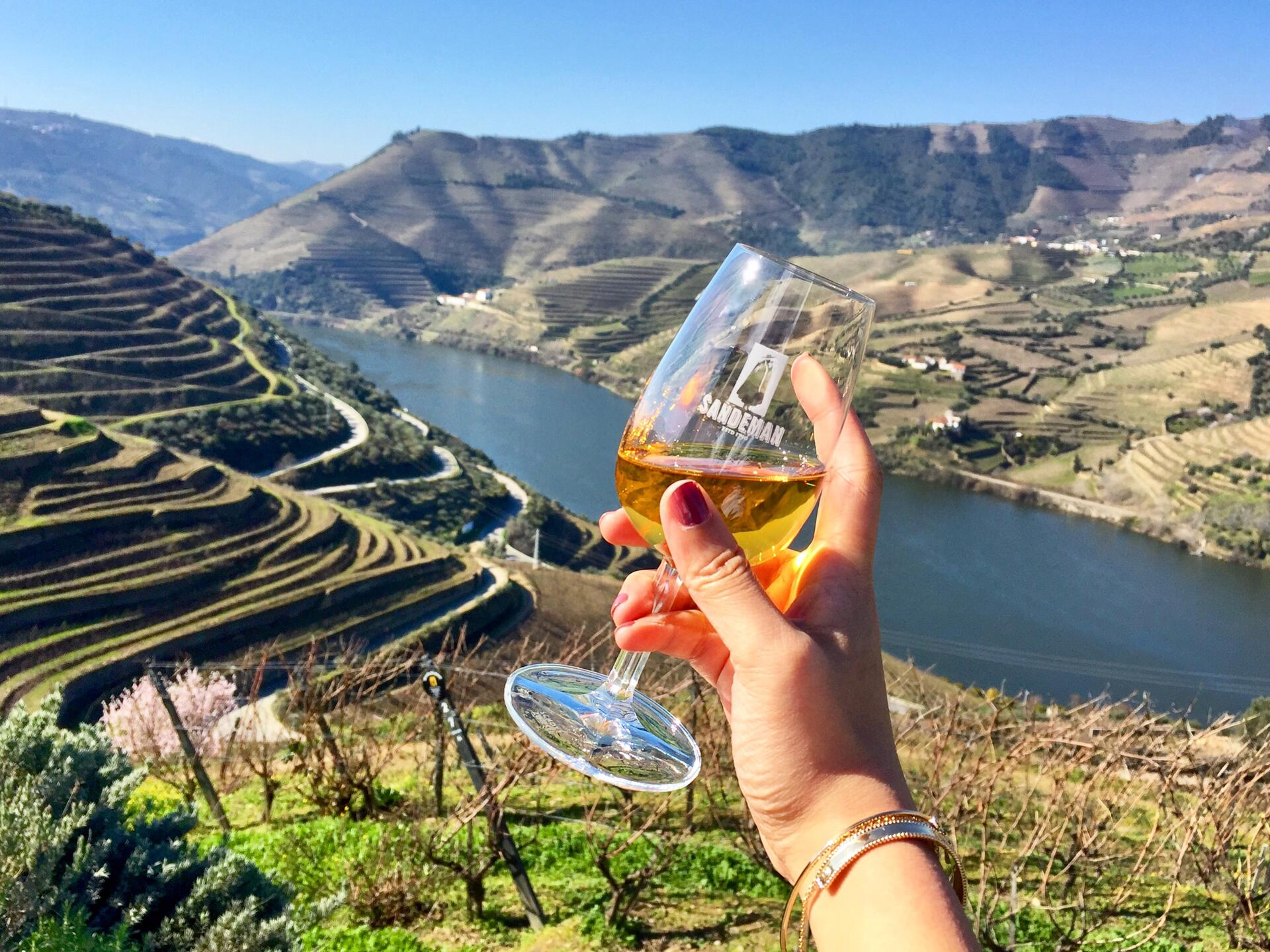 Image result for portugal wine tasting