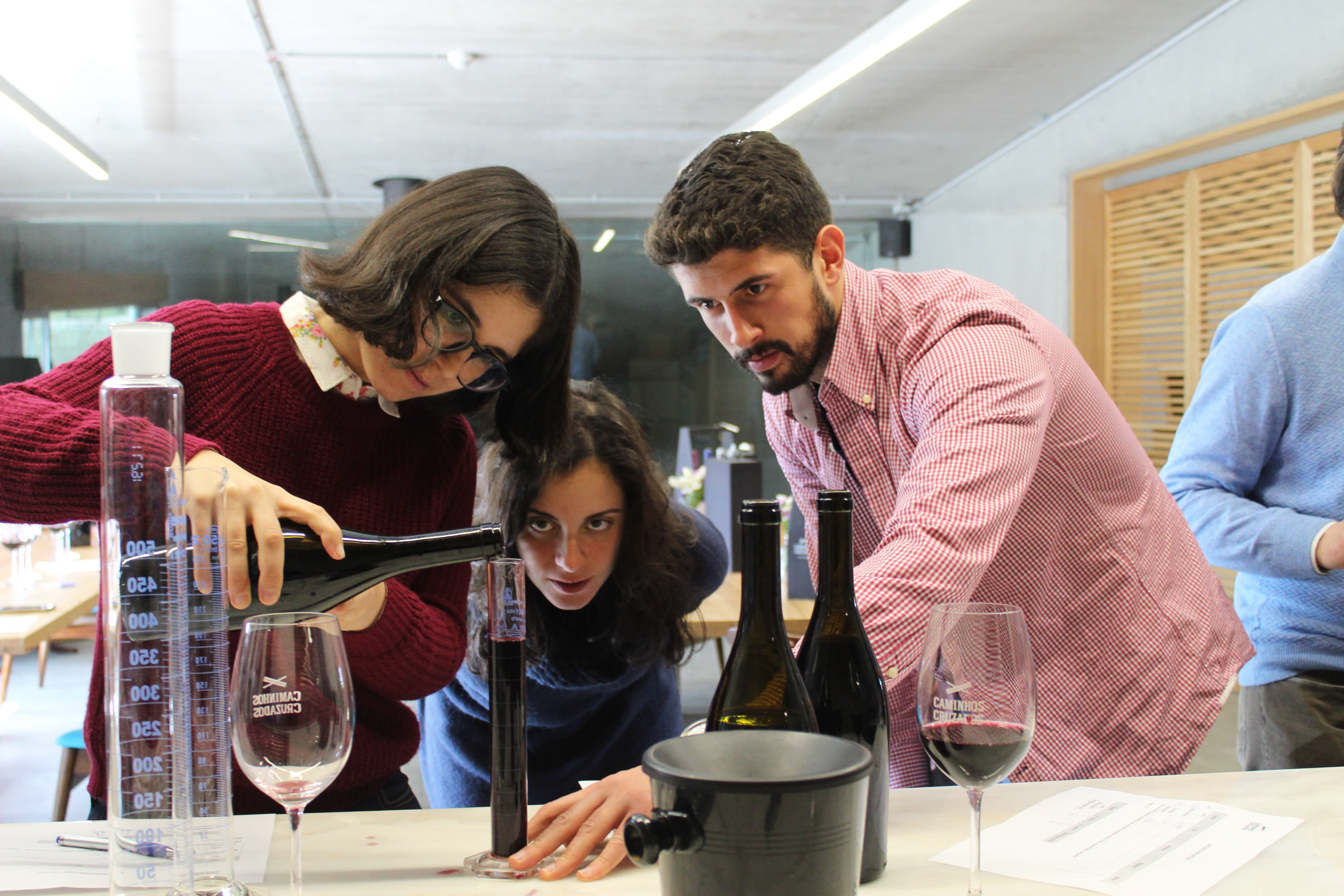 Caminhos Cruzados - Creative Winemaking