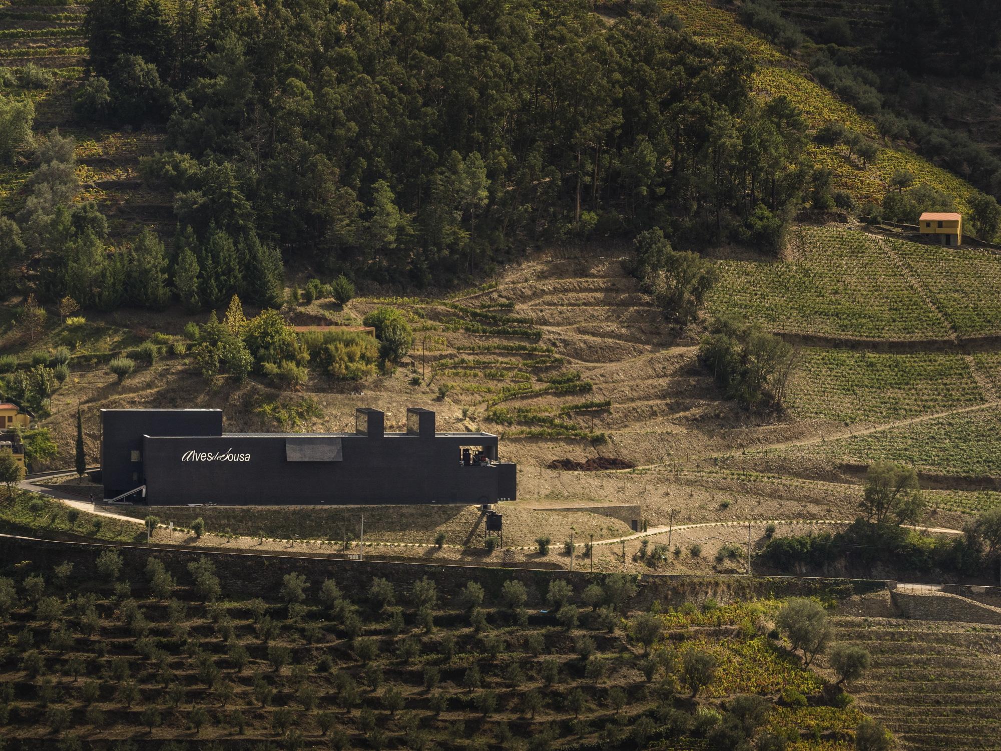Quinta da Gaivosa - Visit & Premium Wine Tasting