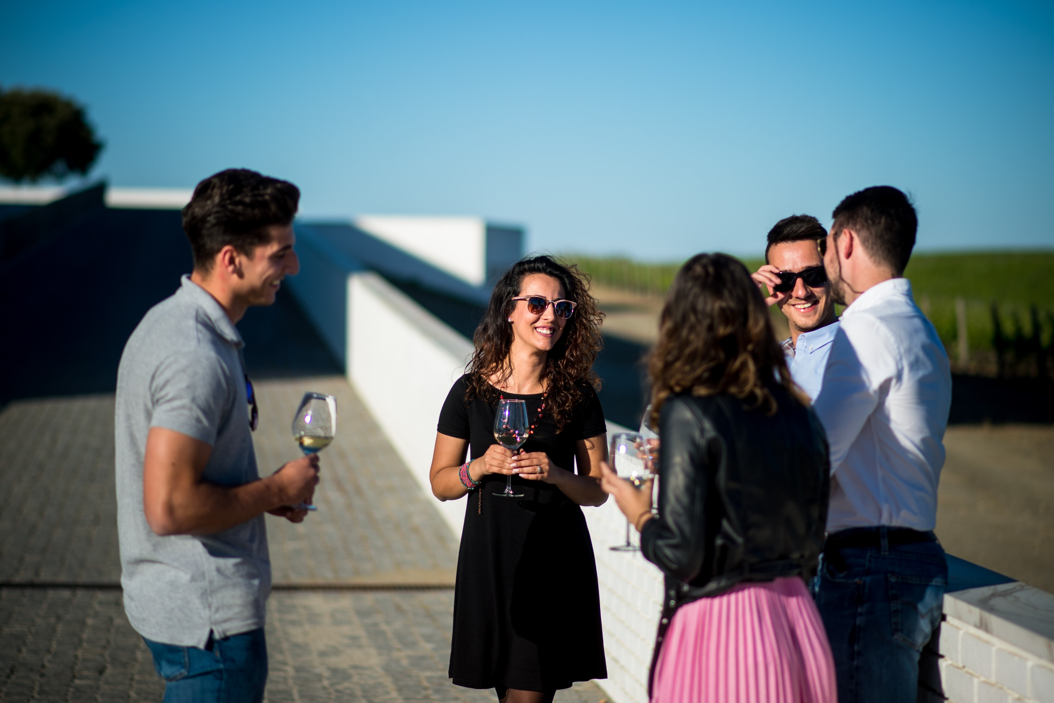 Adega Mayor - Workshop Vínico