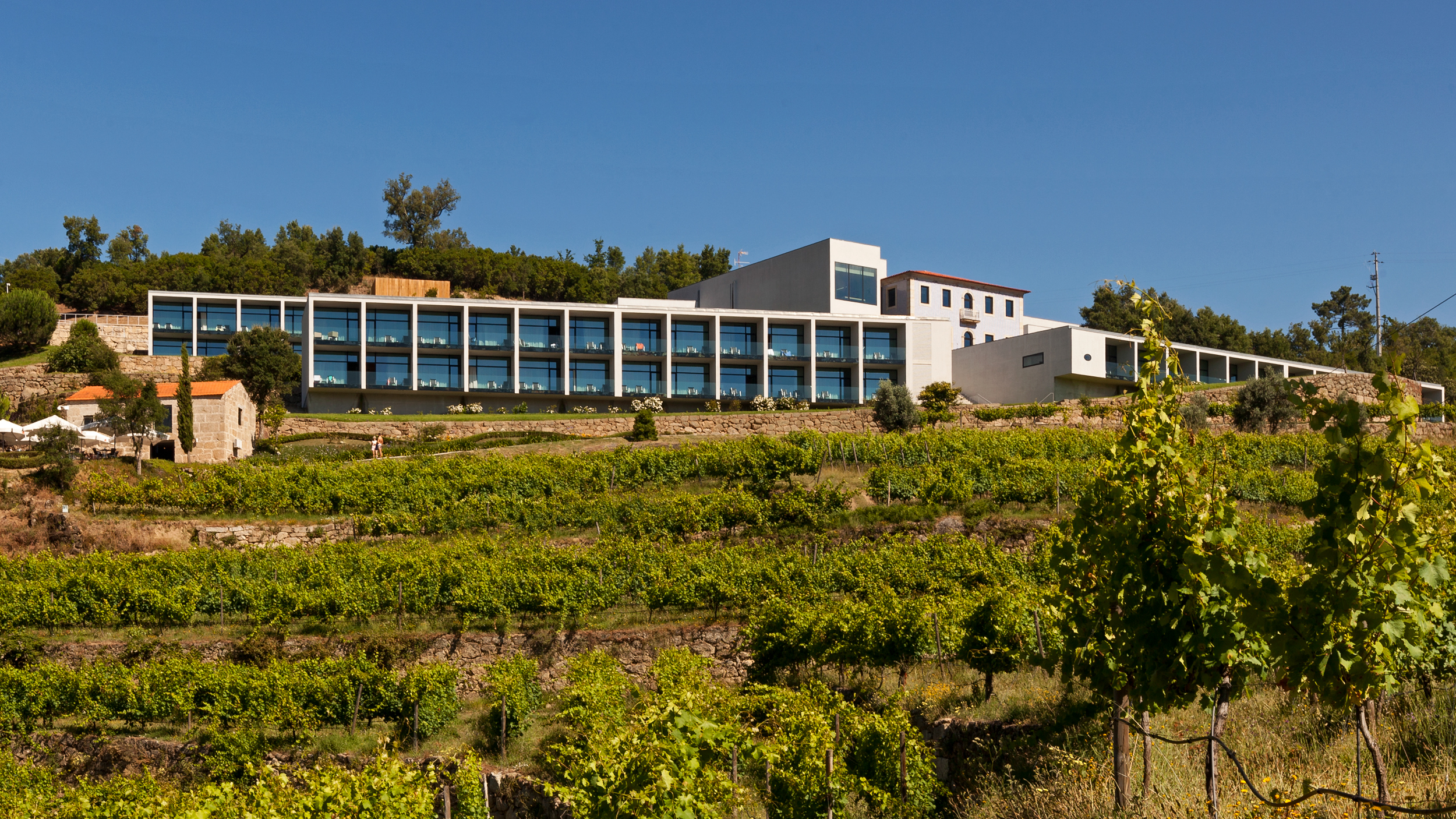 Douro Palace - Histories from Douro