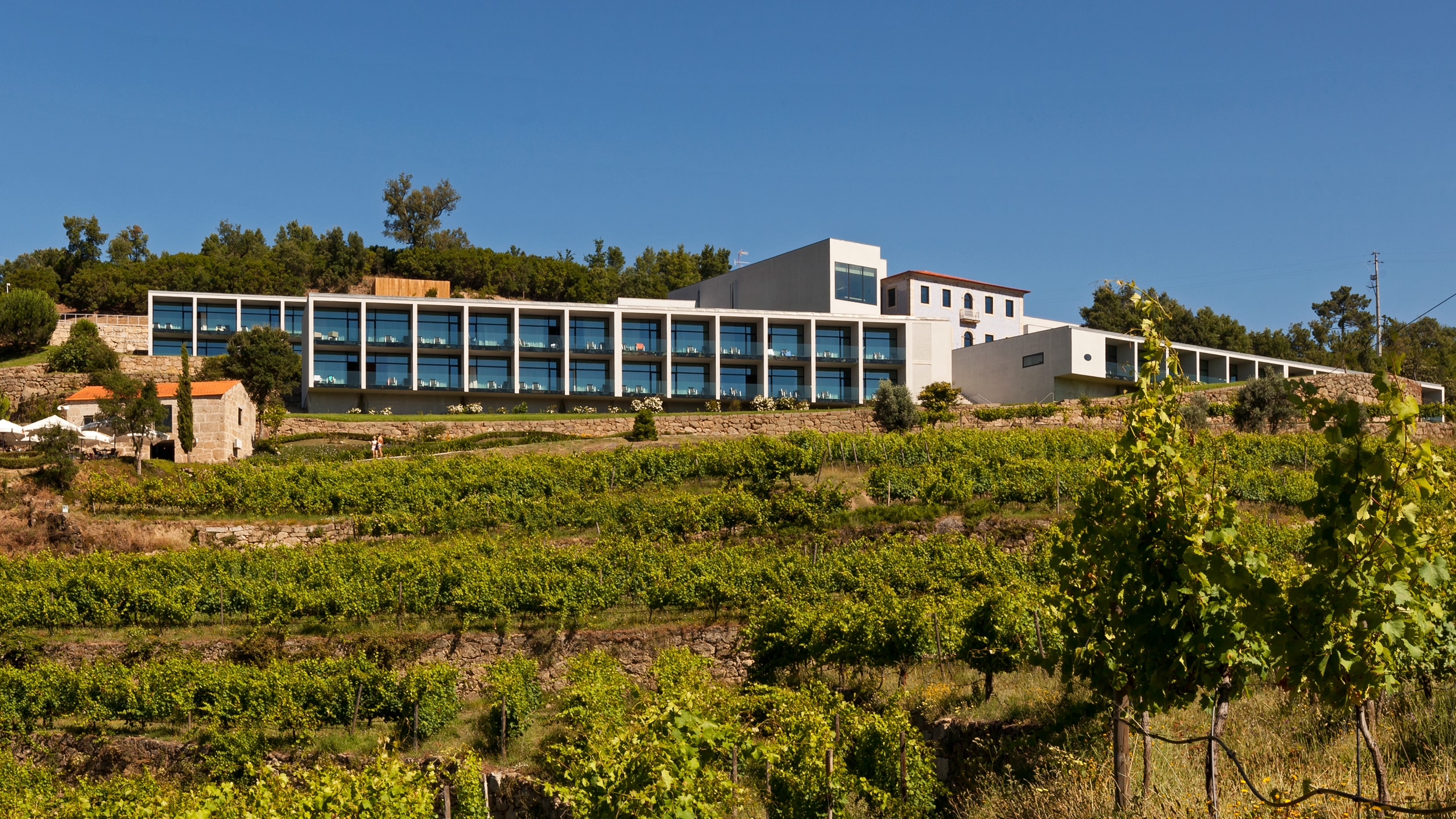 Douro Palace - Farm to Table