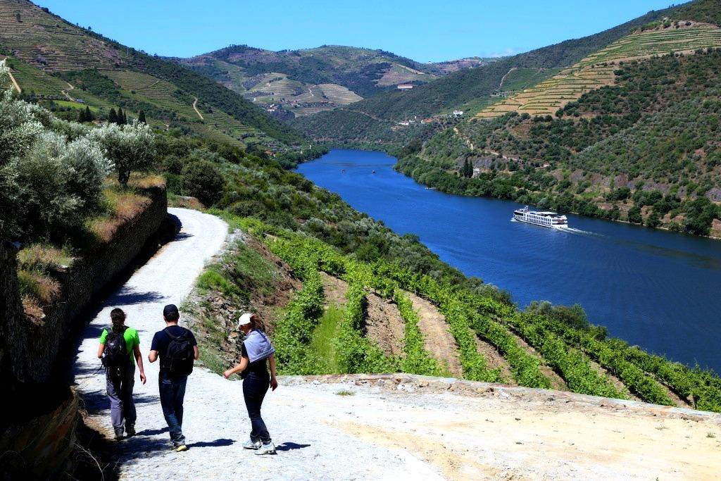Caminhada & Passeio de Barco no Douro