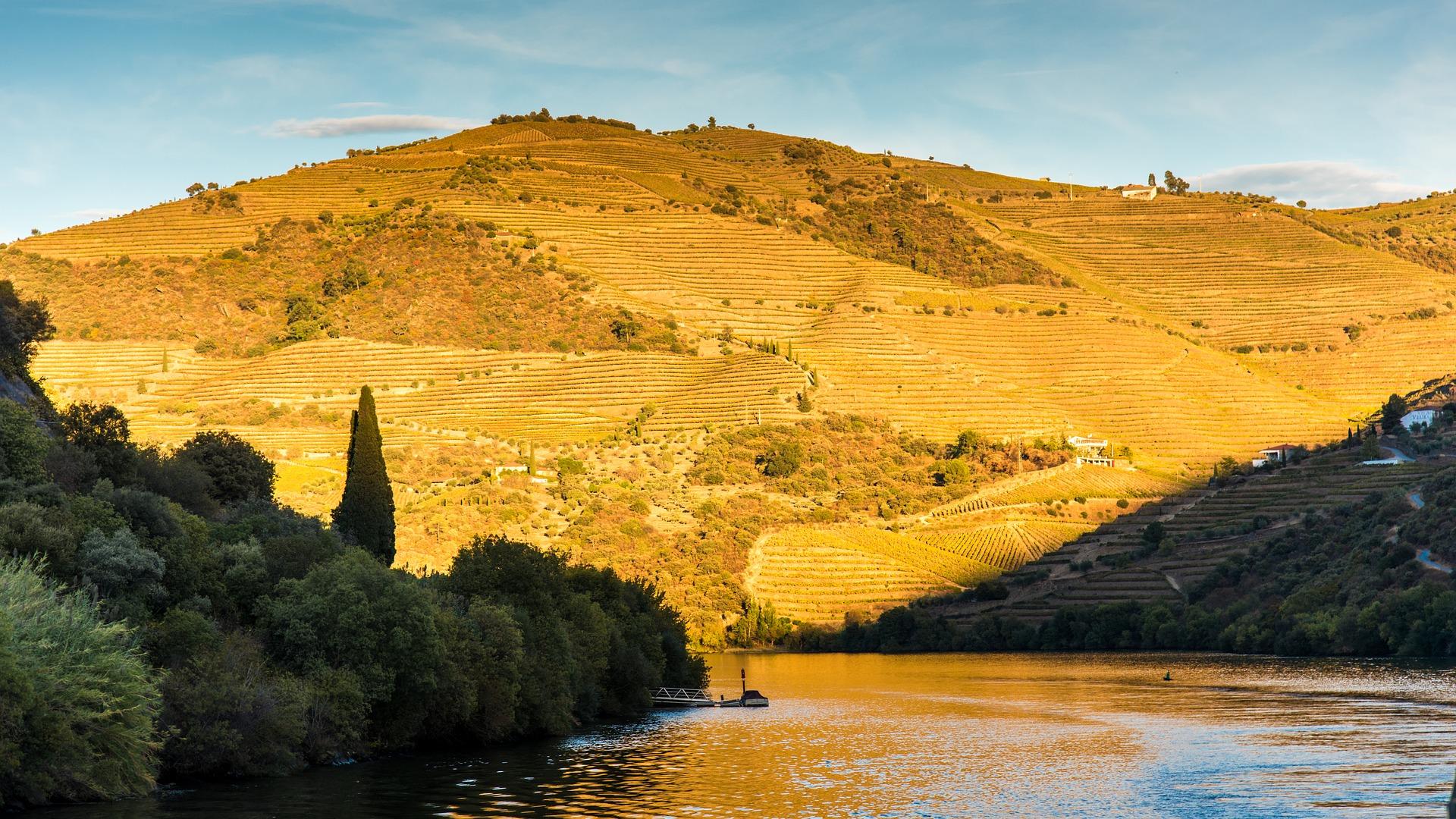 Cruzeiro & Prova de Vinhos na Quinta do Bomfim