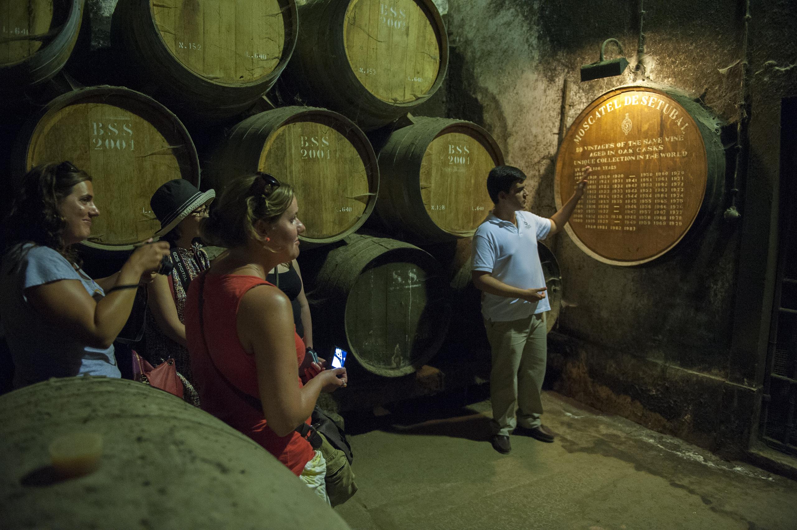 Arrábida Tour de Vinhos