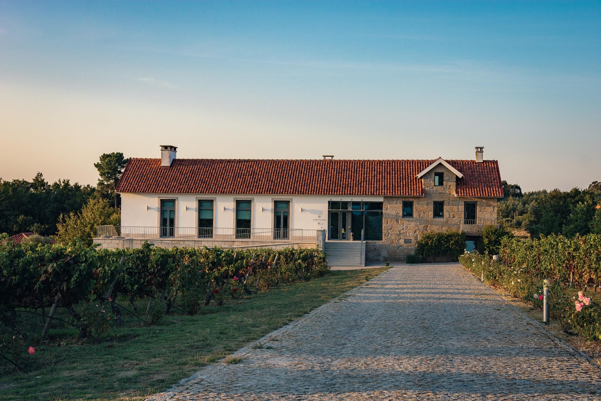 Quinta de Madre de Água - Wine & Food