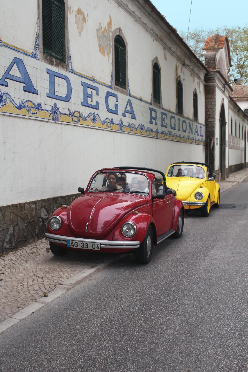 Beetle Wine Tour
