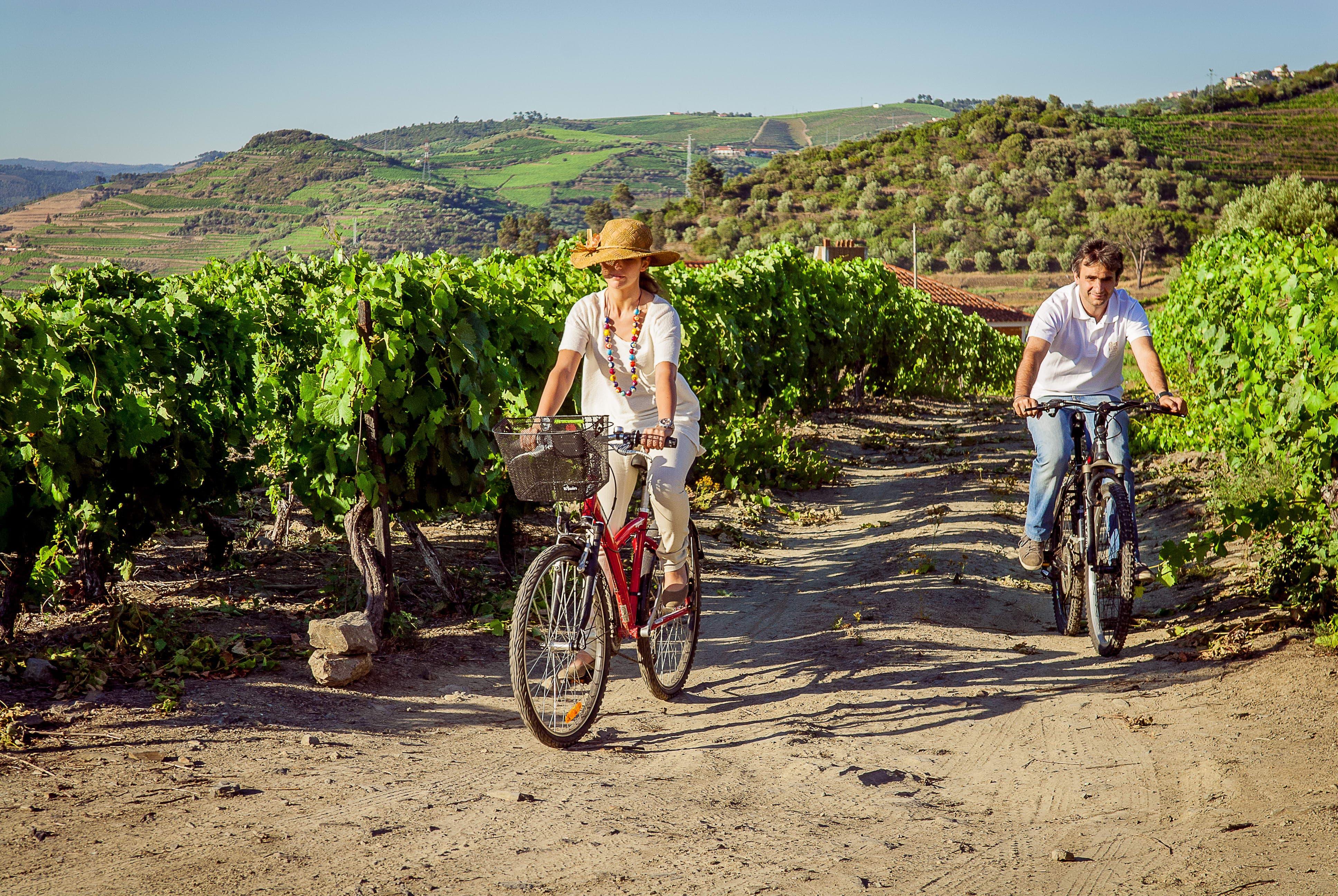 Food & Wine Tour no Norte e Douro