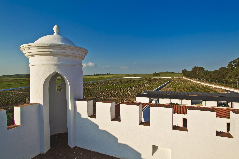 Torre de Palma - Prova 2 Vinhos & Passeio a Cavalo