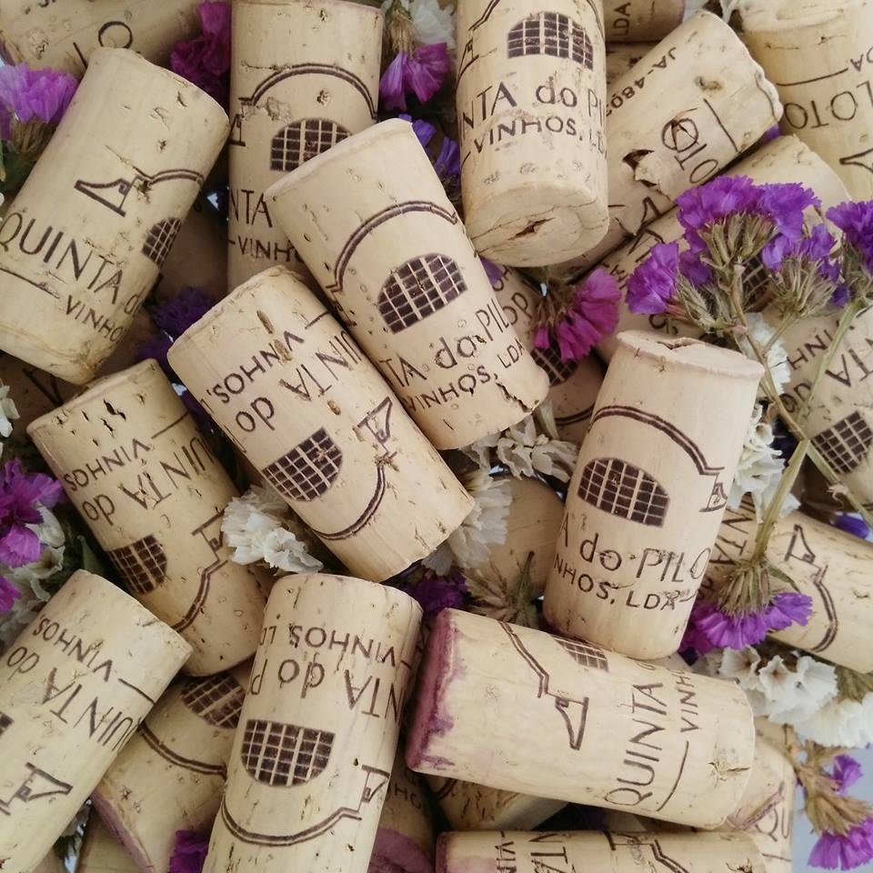 Quinta do Piloto - 4 Wines for Tasting