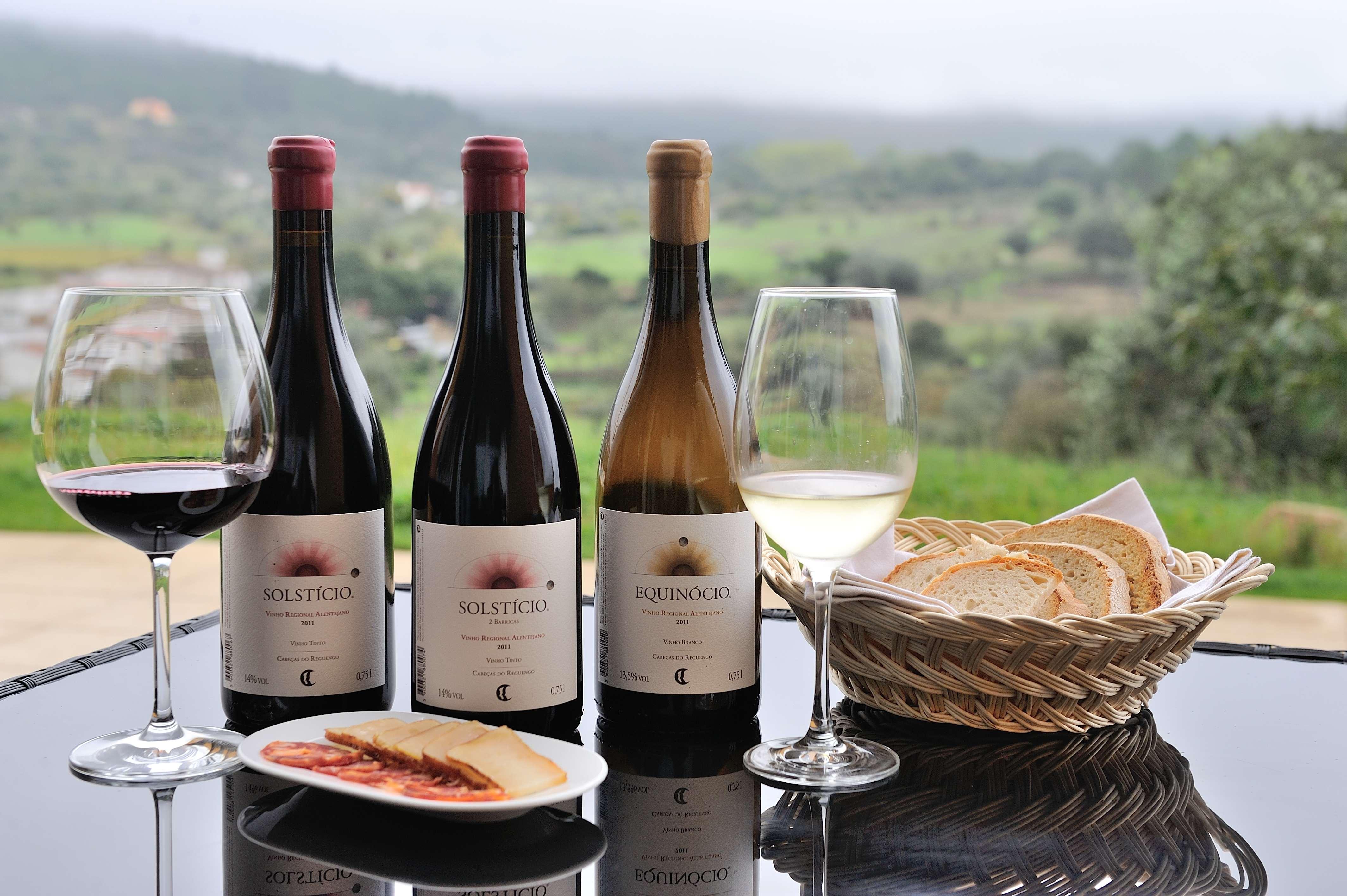 Cabeças de Reguengo - Visita & Prova de Vinhos