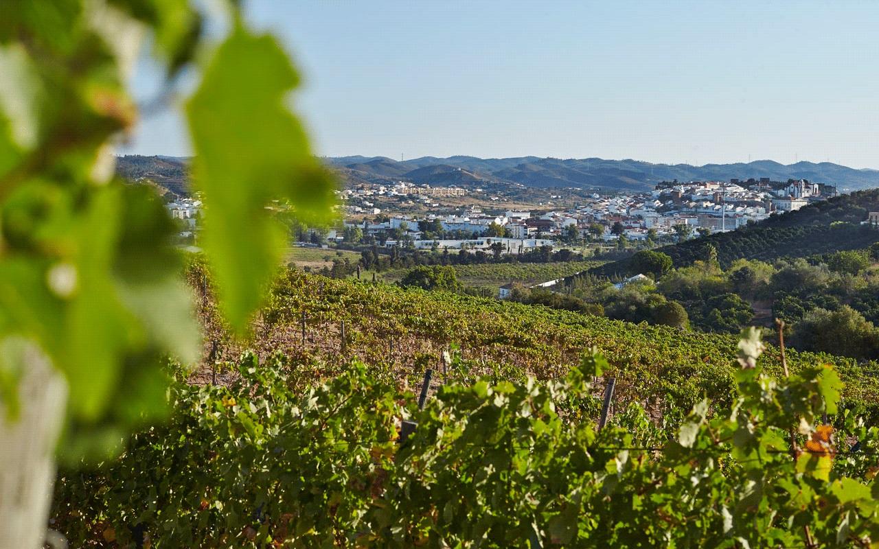 Convento do Paraíso - Wine Tour