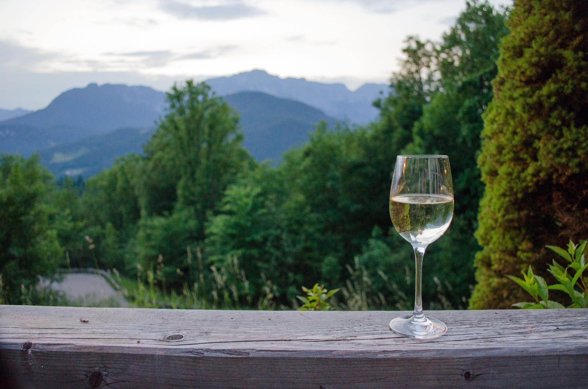 Prova de Vinho Verde na Casa de Sezim