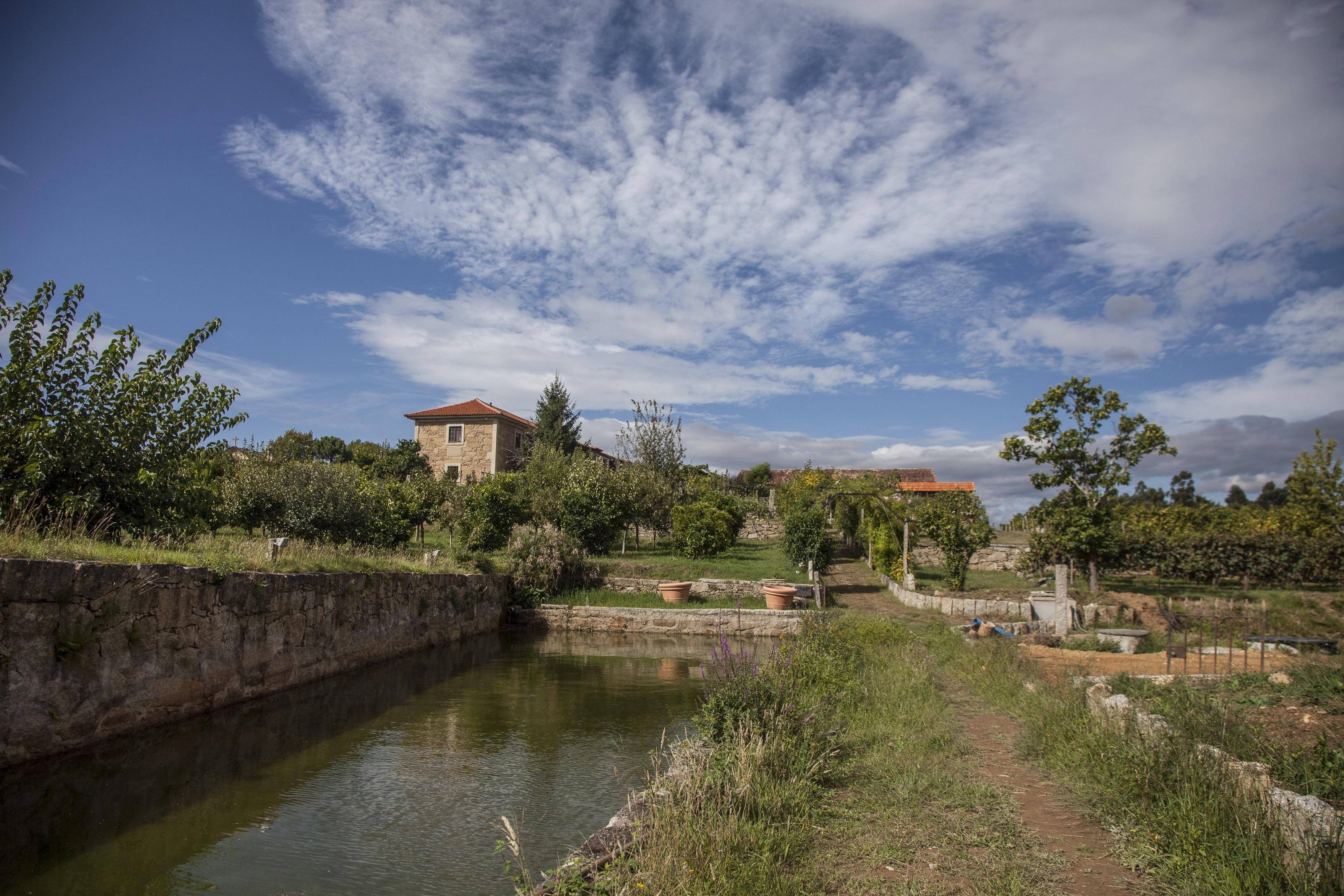 Quinta de Santiago - Piquenique nas Vinhas