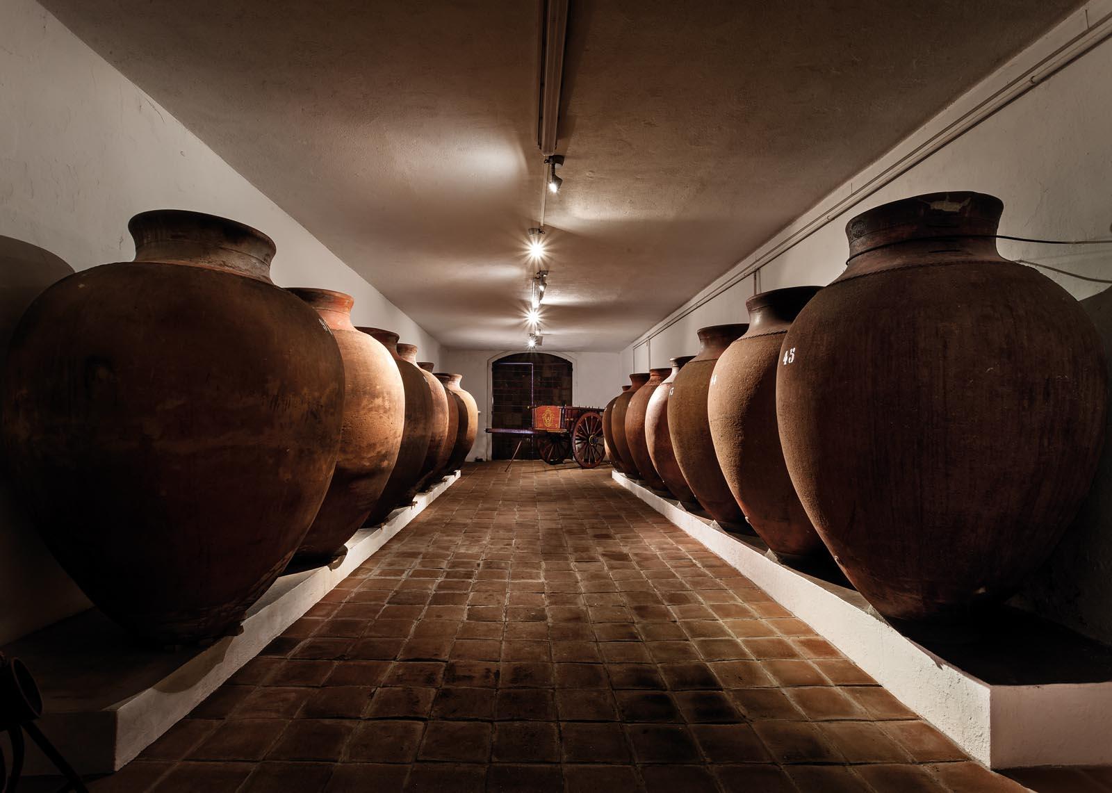 Adega José de Sousa - Prova 4 Vinhos