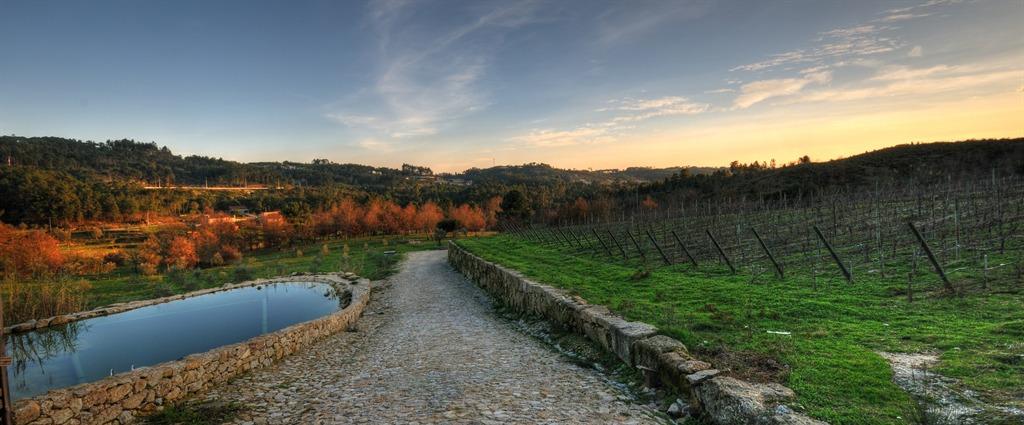 Quinta do Medronheiro – Food & Wine Break