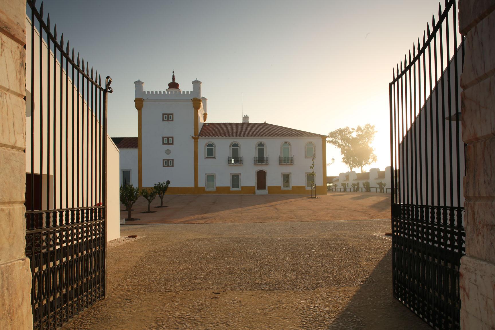 Torre de Palma – Workshop de Equitação & Prova