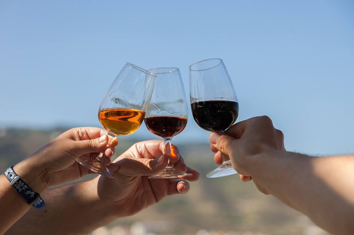 Quinta da Pacheca – Visita Guiada & Prova de Vinho