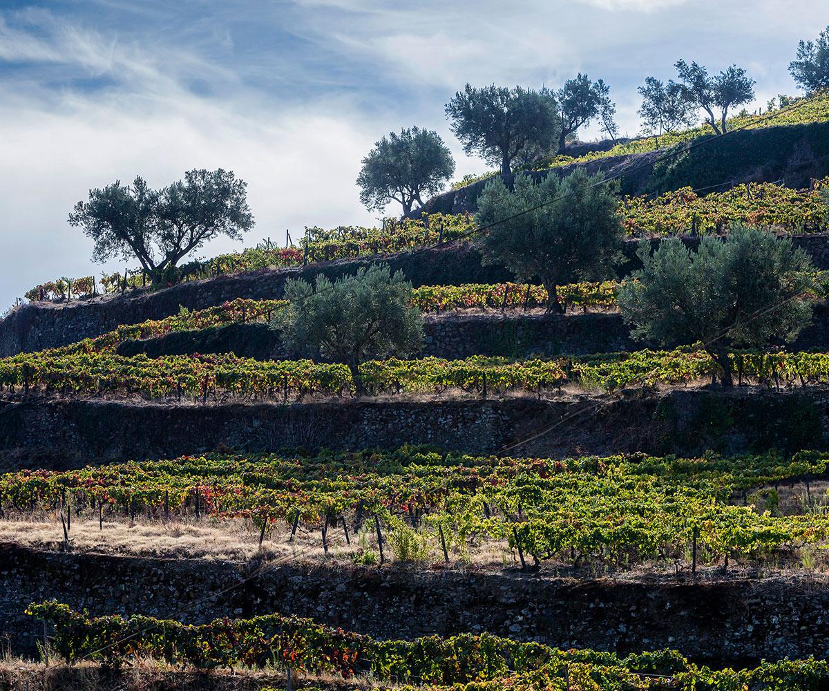Quinta de Marrocos - Refeição nos Potes