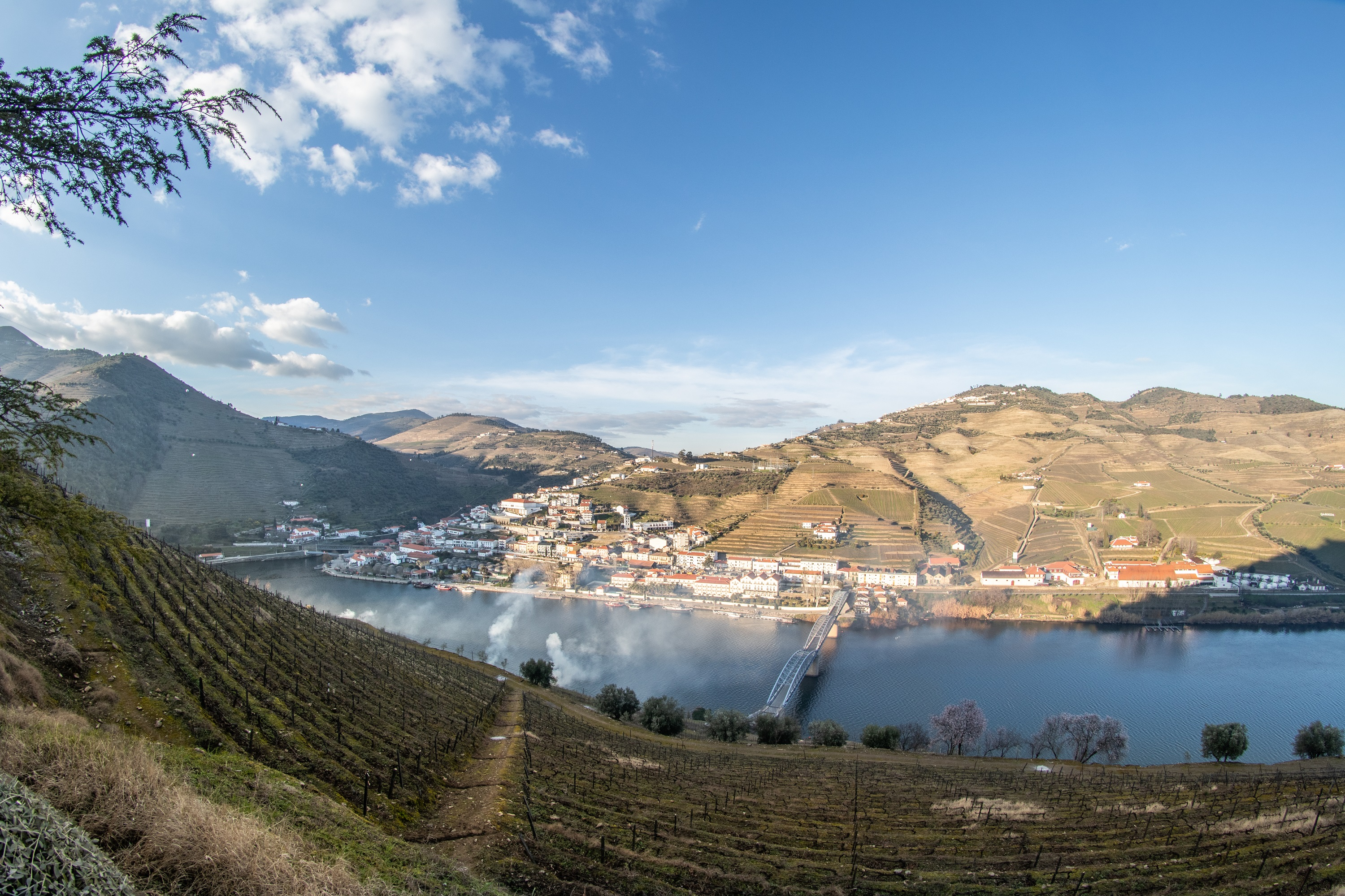 Half Day Tour in Douro Valley