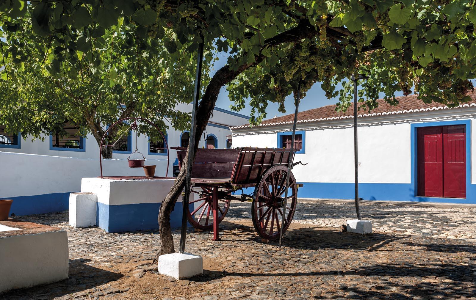 Adega José de Sousa – 4 Vinhos & Tapas