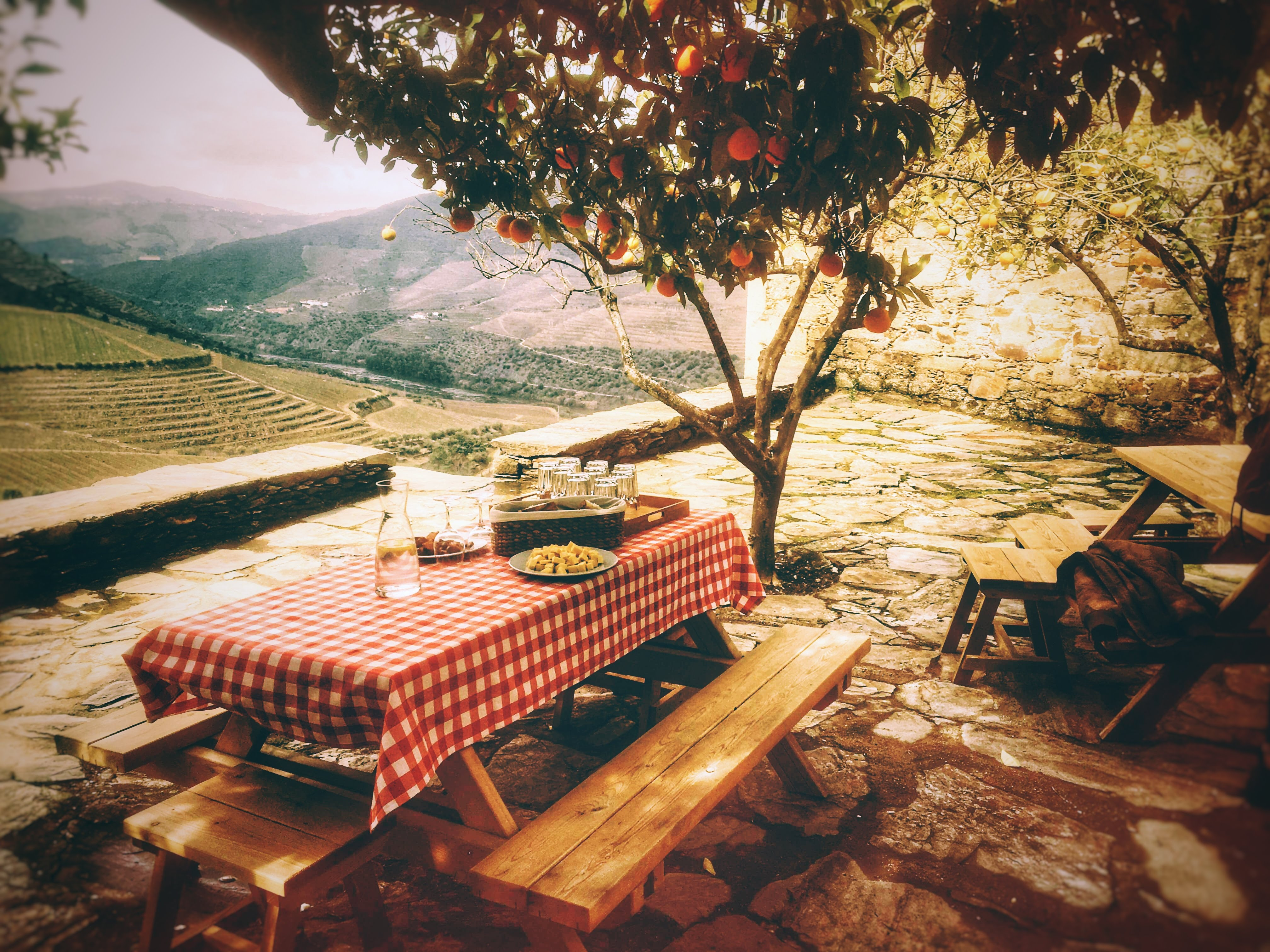 Quinta da Gricha – Prova de Vinhos do Porto