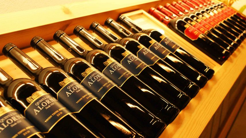 Quinta da Alorna - Visit & Tasting of 3 Wines