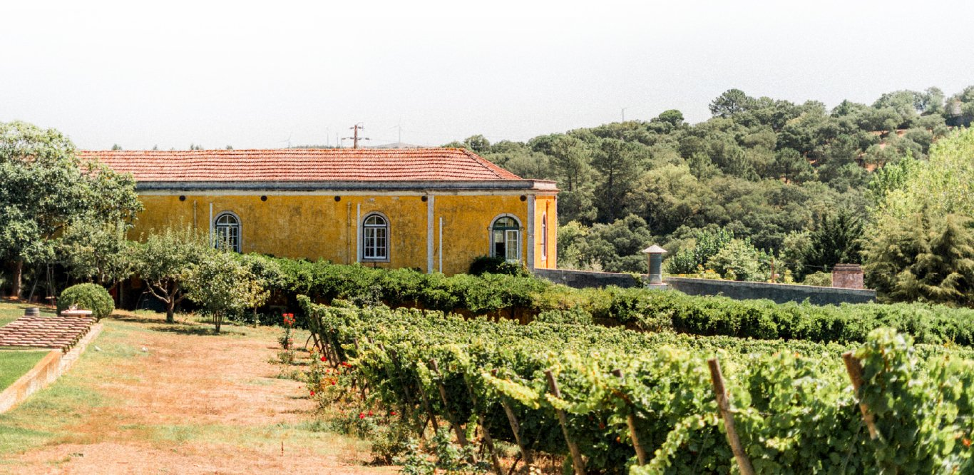 Quinta de Sant'Ana – Wine Adventurer