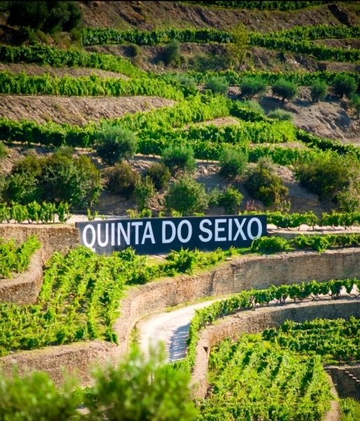 Quinta do Seixo – Picnic at the Vineyards