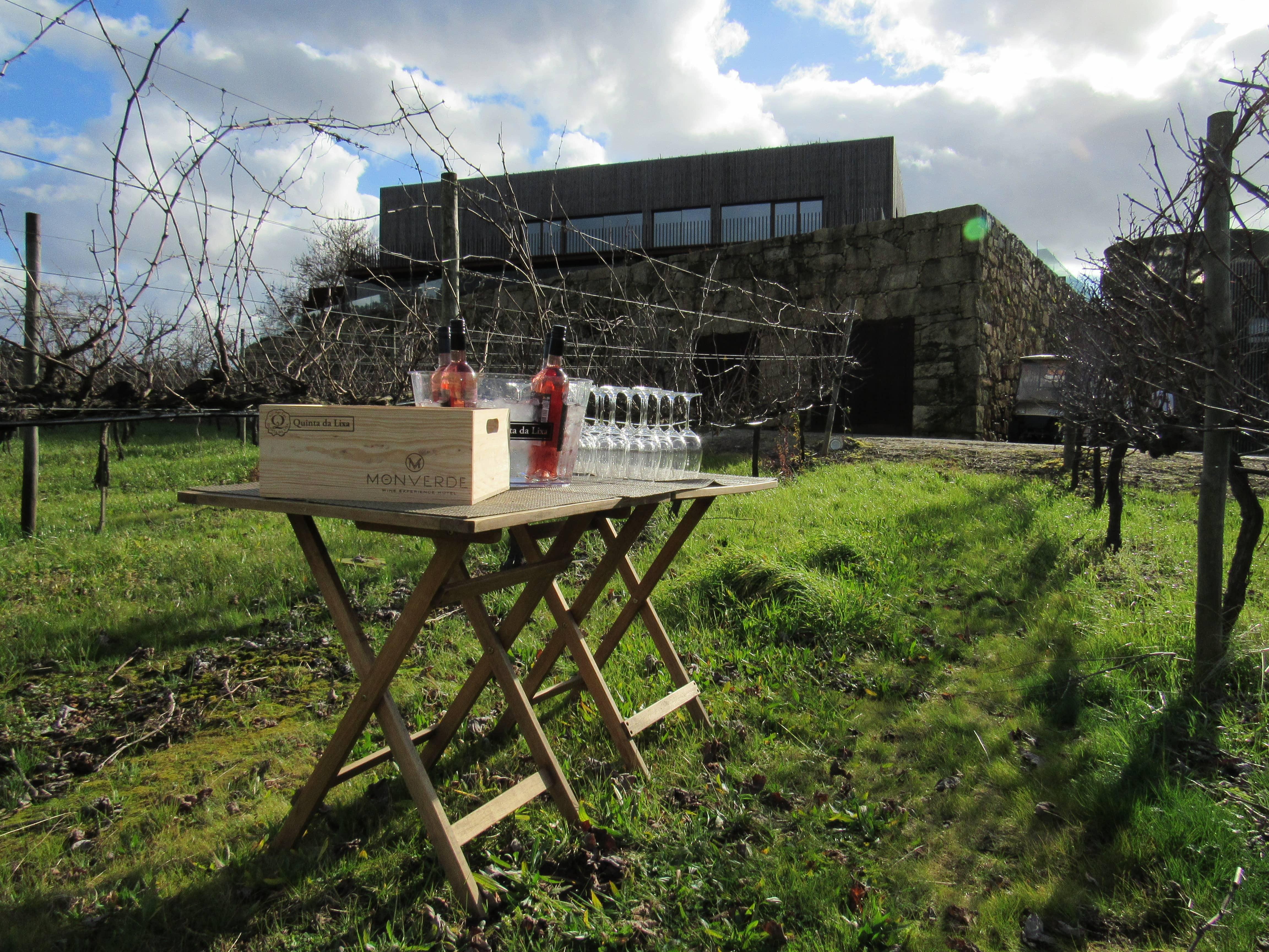 Monverde – Afternoon Between Vineyards