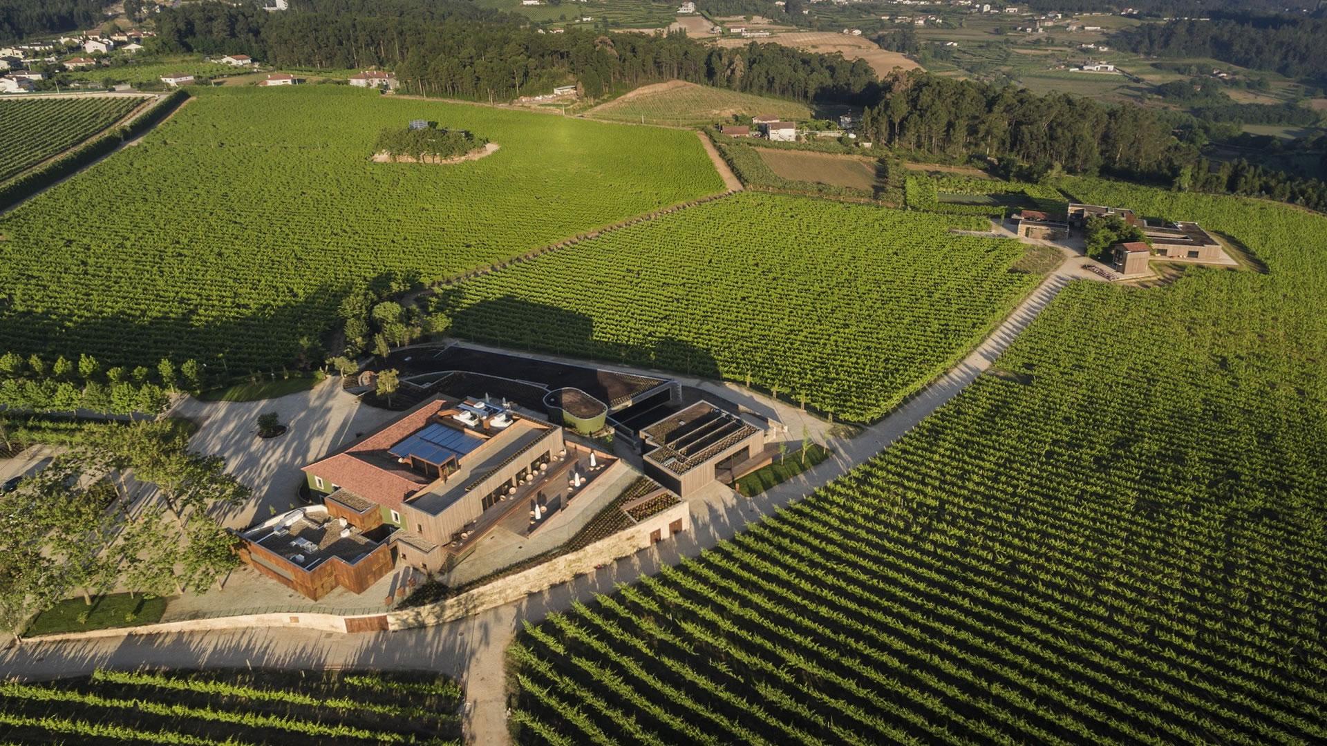 Monverde – Pasión por el Vino