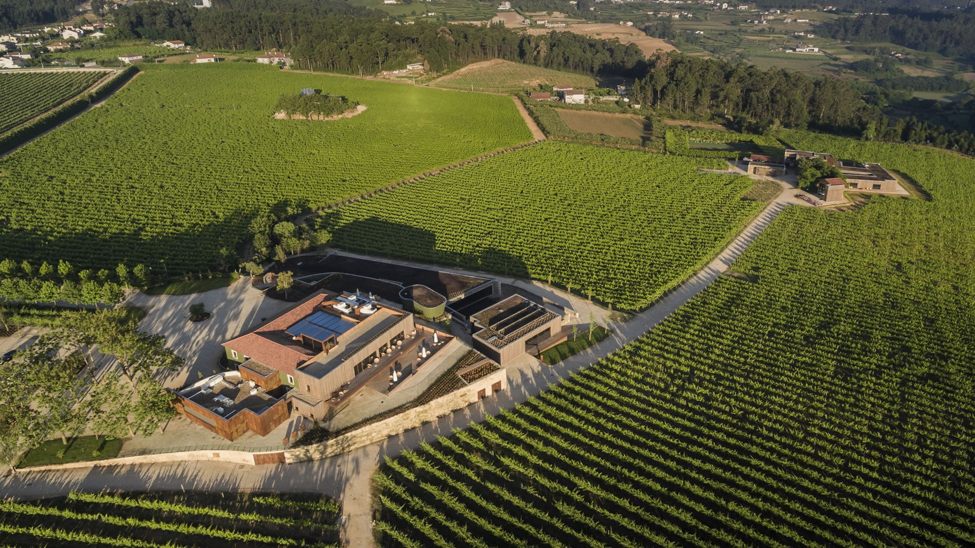 Monverde – Wine Passion