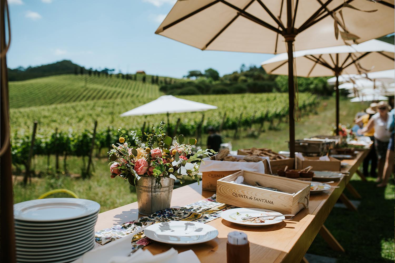 Quinta de Sant'Ana – Picnic in the Vineyards