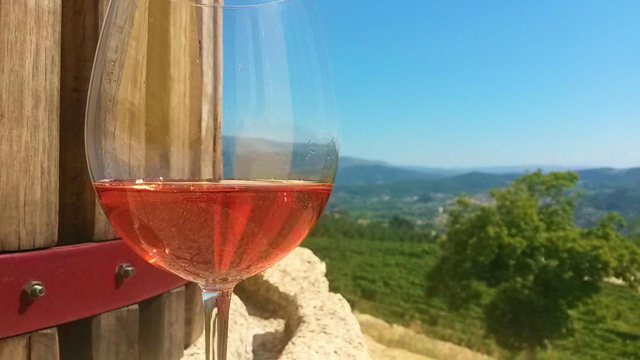 Quinta de Santa Cristina  - Prova de 4 Vinhos