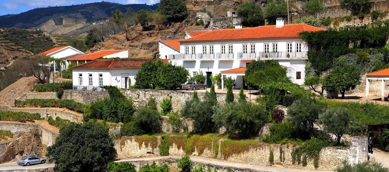 Quinta do Panascal – Visit & Regional Lunch