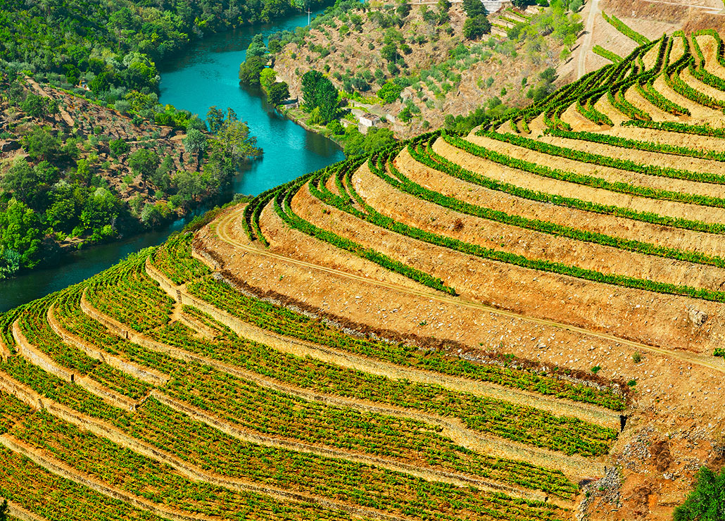 Portugal by Wine - Enoturismo em Portugal