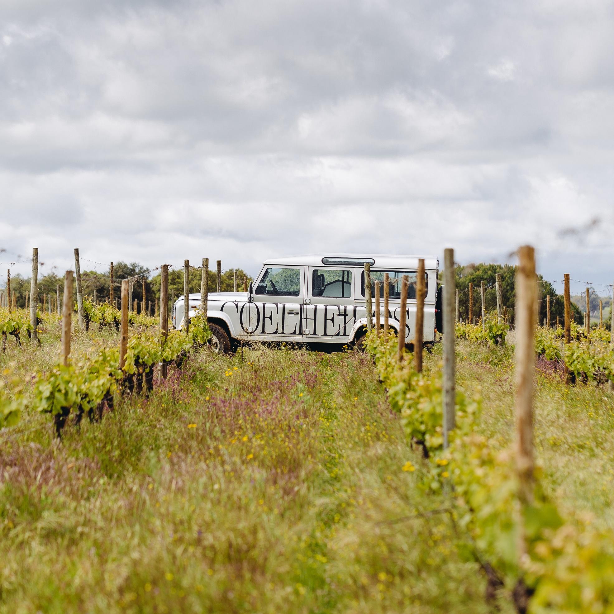 Herdade de Coelheiros – Lunch at the Wine Estate