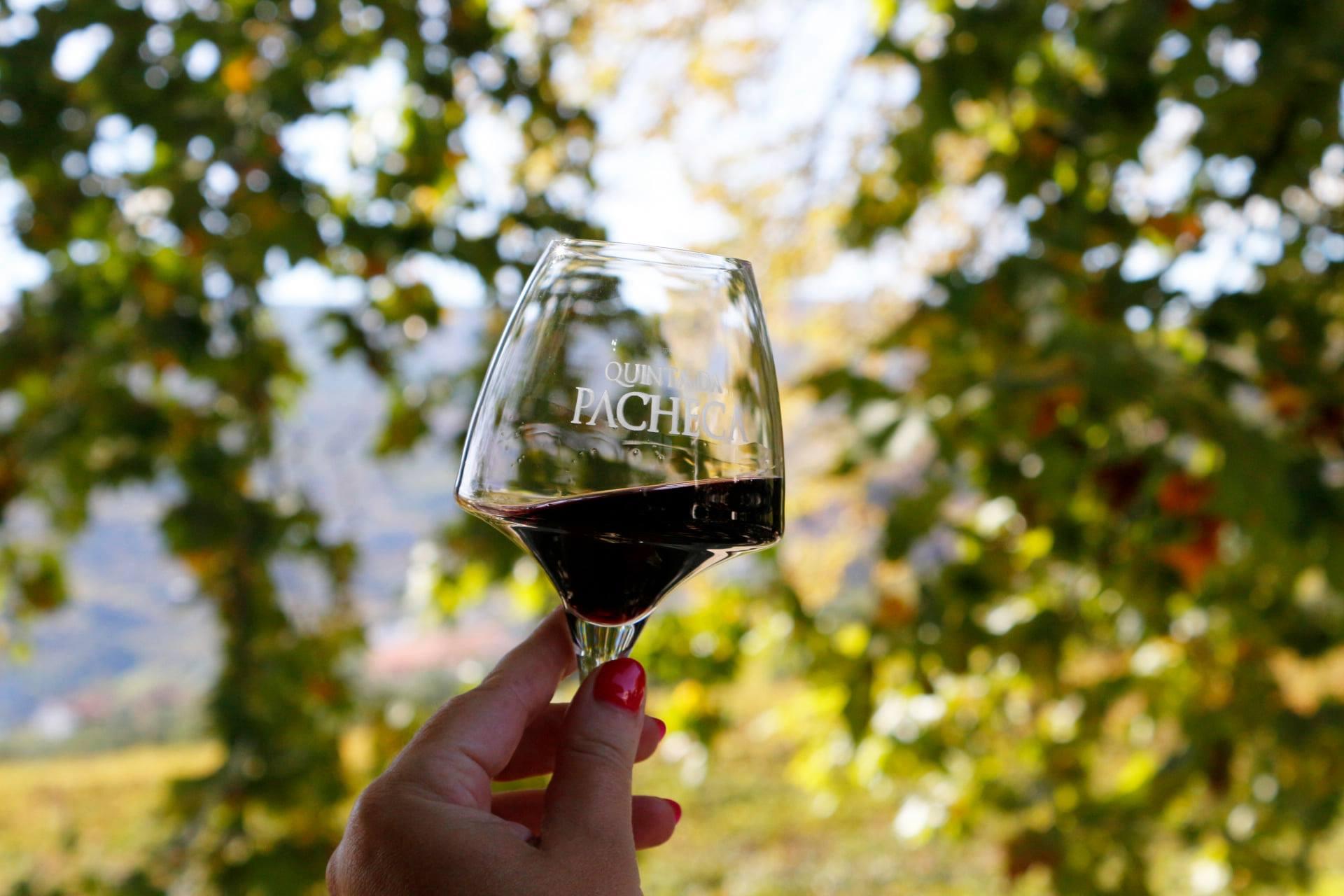 Quinta da Pacheca – Visita & Prova Superior
