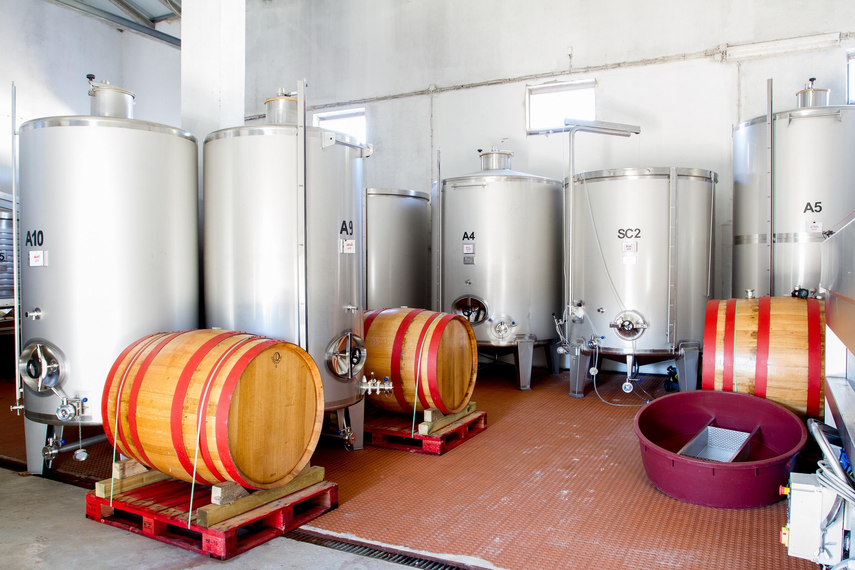 Quinta da Boa Esperança – 3 Wine Tasting