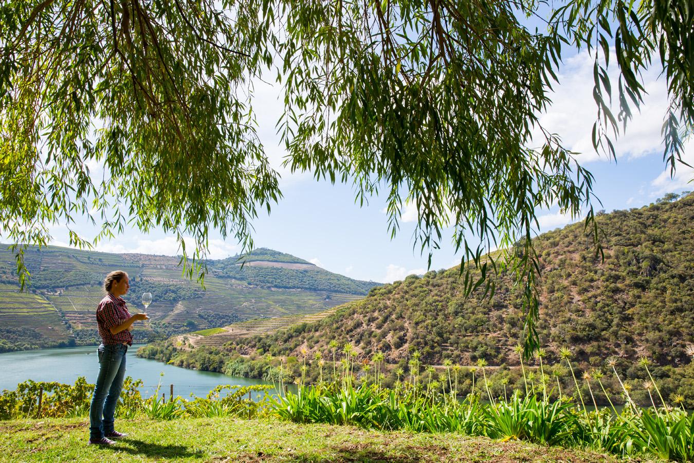 Quinta de Ventozelo – Casa do Laranjal