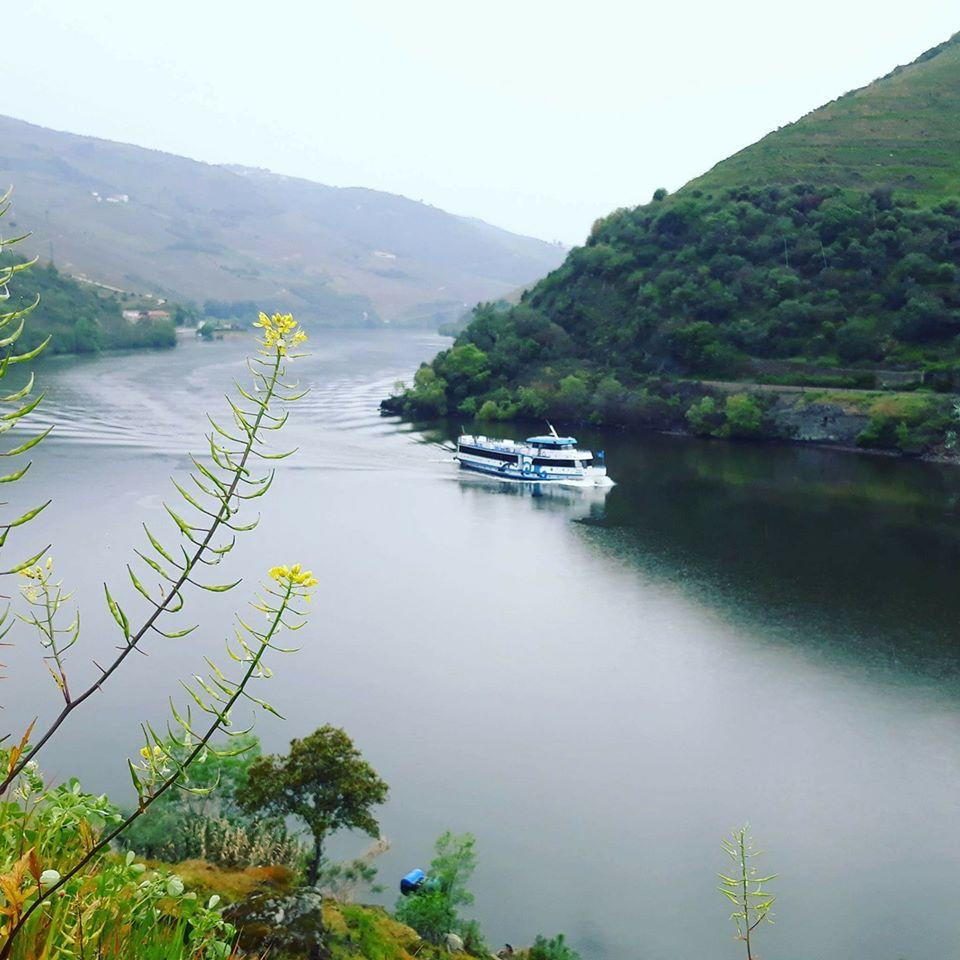 Douro Reserva
