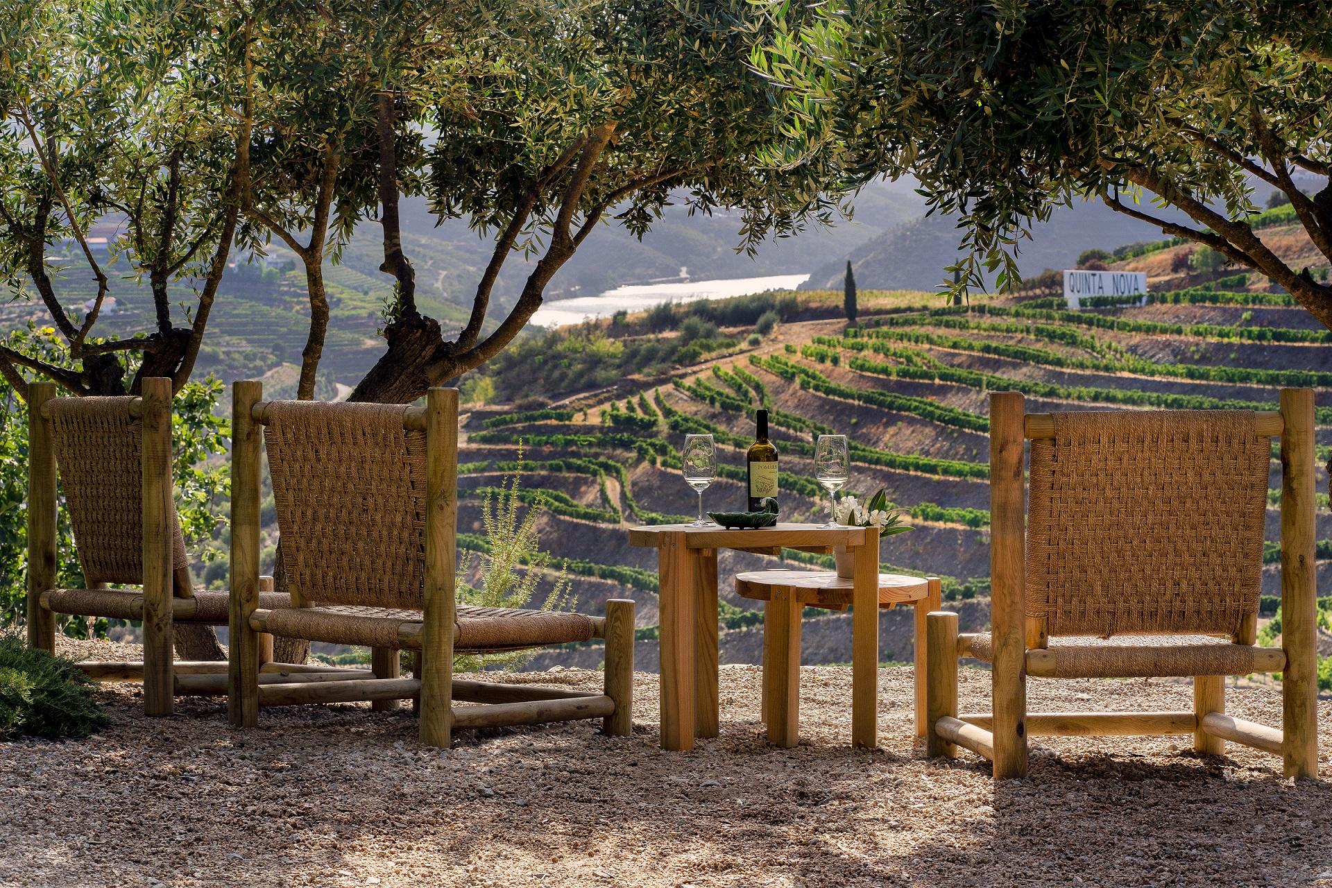 Luxury Wine & Food Tour in Douro - 5 Days