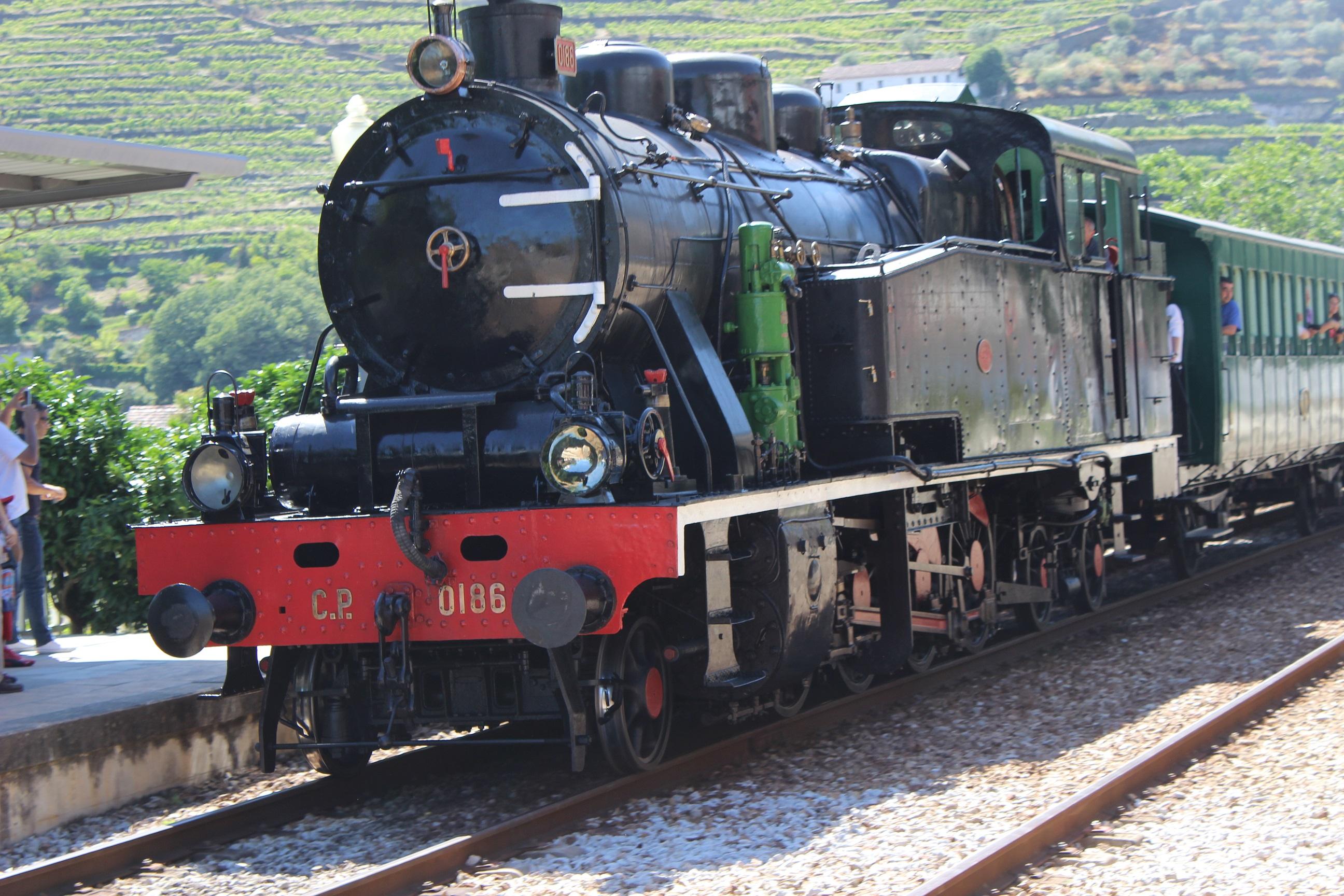 Douro Vinhateiro e o Comboio Histórico