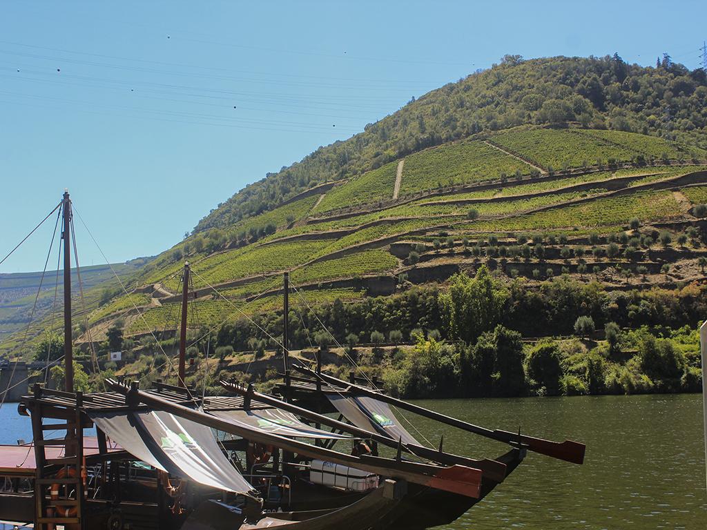 "Relax Douro  ""Desfrute do Vale"""