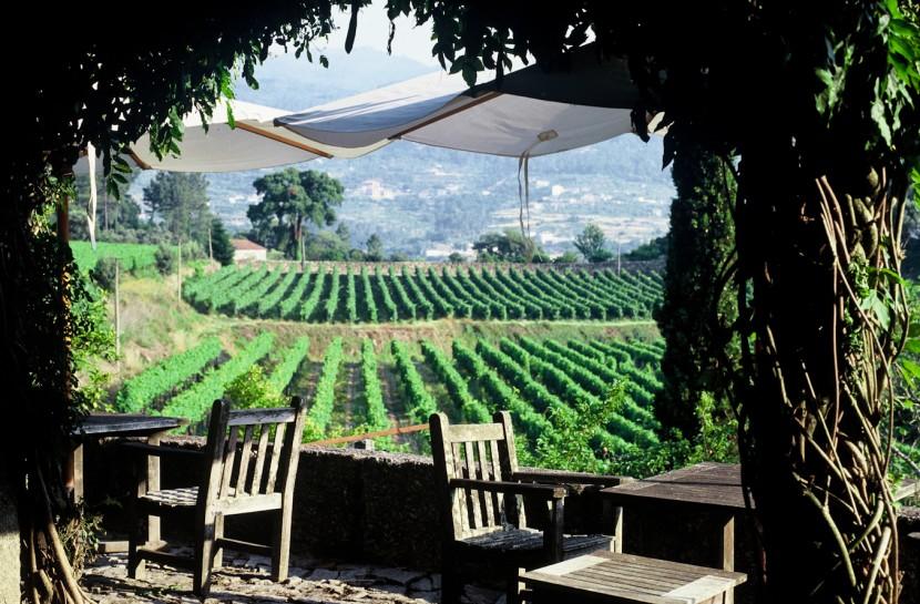 Vinho Verde Wine Tour - Dia Inteiro - Privado