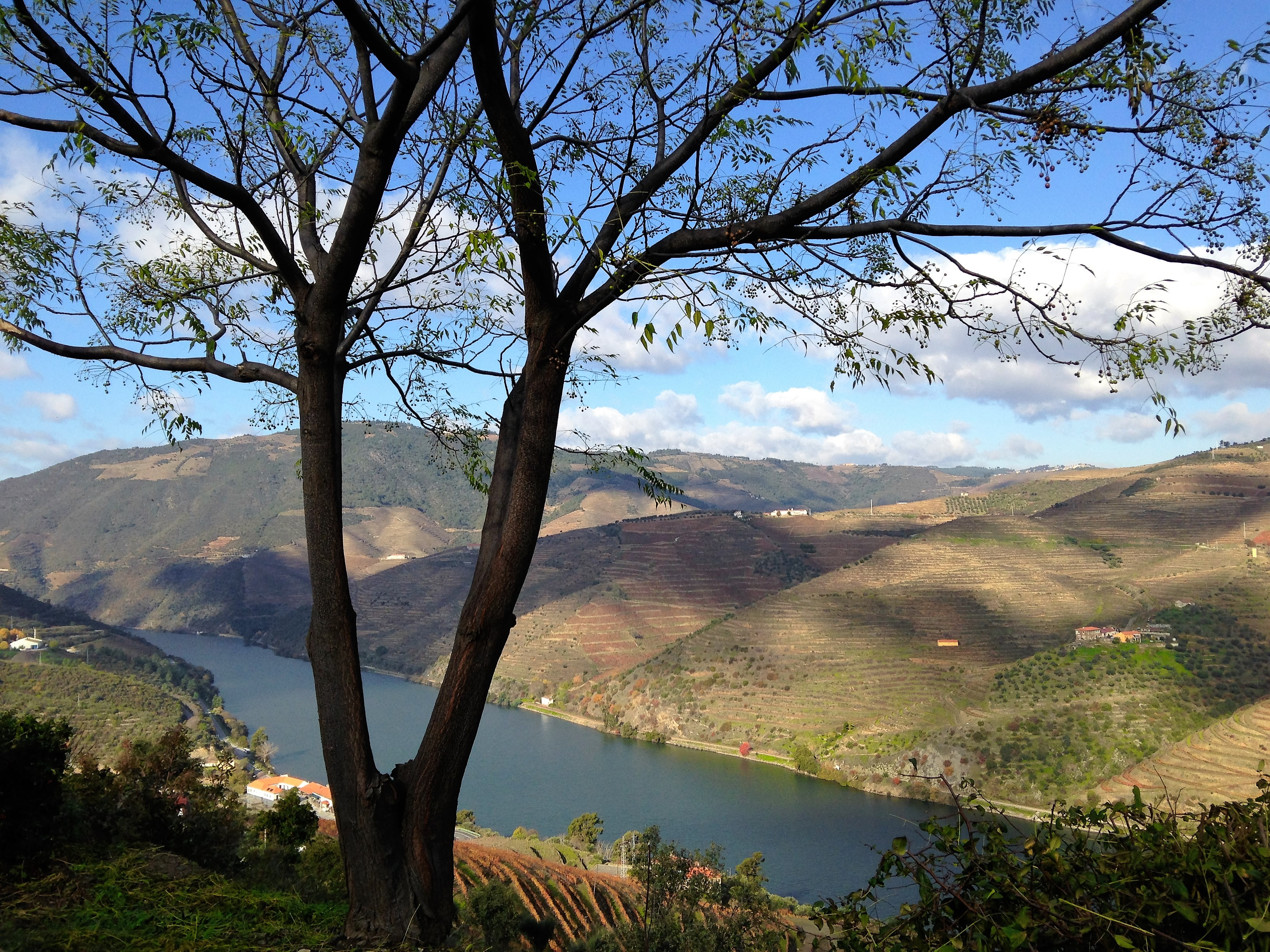Douro Inside Out