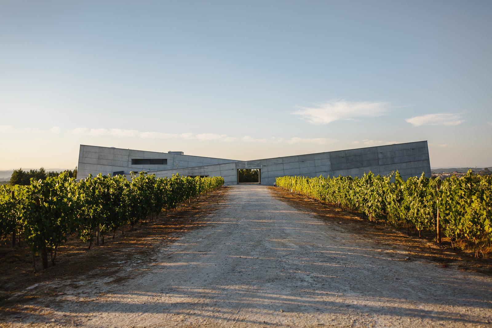 Caminhos Cruzados - Visita & Degustación 4 Vinos